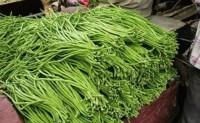 蔬菜病虫害之豇豆病害识别与防治