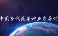 【原创文章】对中国当代蔬菜种业发展的思考