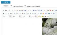 【原创文章】控制DEDECMS v5.7的远程下载图片的大小和文章页面图片大小的控制