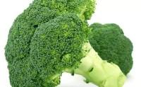蔬菜病虫害之西兰花病害识别与防治