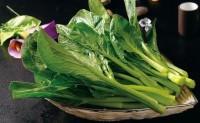早熟菜心品种哪种好,比一比就发现碧清甜菜心真不错!